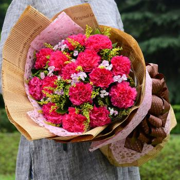 母爱深深-11朵红色康乃馨花束