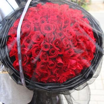 永恒之爱-99朵红玫瑰