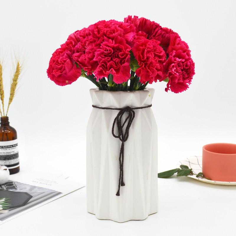 基地直发-18朵红色康乃馨+送2朵